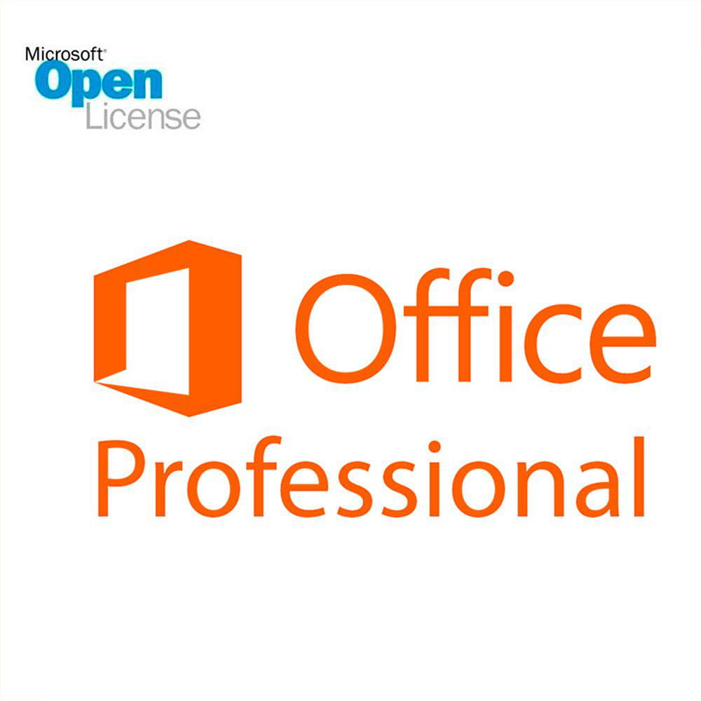 Office Professional Plus 2019 - SNGL OLP NL